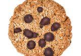 クッキーキャット バニラ&チョコチップ_03